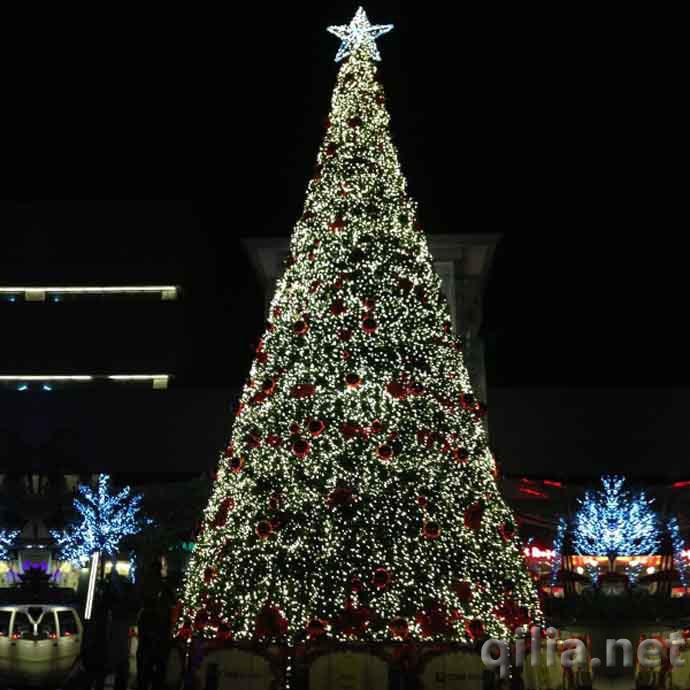 10米大型圣诞树是现在酒店、商场及广场最常见的大型圣诞树高度,大多数客户都会选择为大树加上LED灯串,并在节日开始的前夕大张旗鼓地搞一个隆重的圣诞树点灯仪式,点灯的同时又可以有很好的广告效应。 10米是一个常见的大型圣诞树高度,6米,8米,12米等各种高度的圣诞树都可以按要求订制。